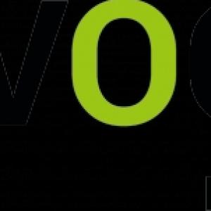VOQUZ IT Solutions GmbH Logo