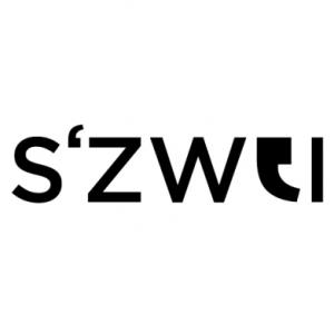 S2 II network GmbH Logo
