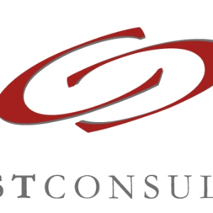 Drost Consulting Logo