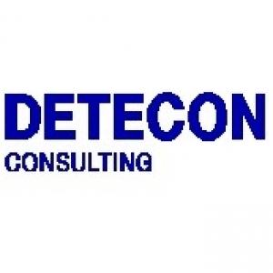 Detecon (Schweiz) AG Logo