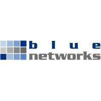 blue networks Service GmbH Logo