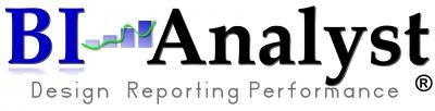 BIAnalyst GmbH & CO.KG Logo